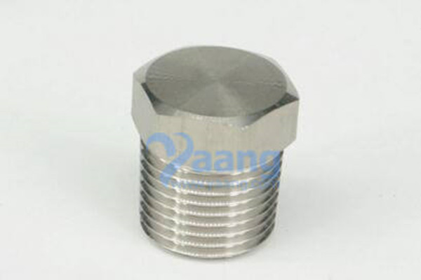 ANSI B31.1 316L Hex Head Plug 1/16″ NPT Male