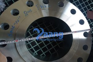 asme b16 5 a182 f316l welding neck flange raised face 10 inch s 80s 600 300x200 - ASME B16.5 A182 F316L Welding Neck Flange Raised Face 10 Inch S/80S 600#
