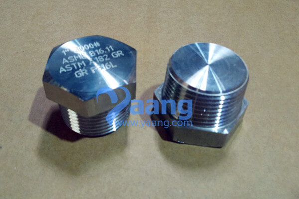 asme b16 11 astm a182 en 1 4404 threaded hex head plug dn25 cl3000 - ASME B16.11 ASTM A182 EN 1.4404 Threaded Hex Head Plug DN25 CL3000